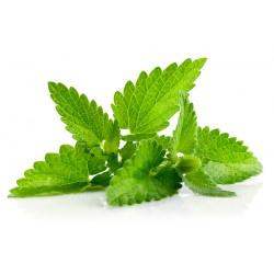e-liquide gourmand à partir d'une herbe aromatique