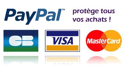 paypal%20paiement%20s%C3%A9curis%C3%A9.j